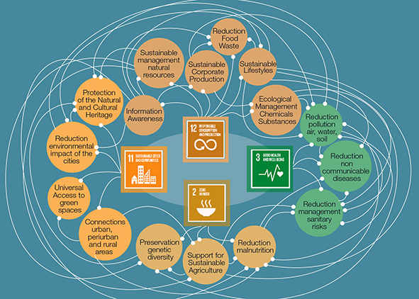 Links between the indicators of the 2030 Sustainable Development Goals, which best respond to the global challenges on the issues of food and health. AGATHÓN 08 | 2020