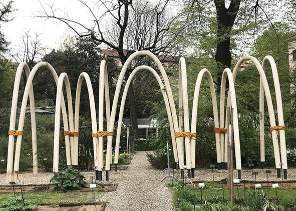 The Circular Garden (ENI and Carlo Ratti Associati, 2019), installation in Orto Botanico Brera, Milano (credit: R. Franchino). agathón